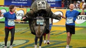 Rhino finish